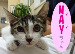 2017.9お友達MAYちゃん