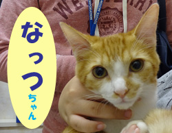 2017.11お友達 なっつちゃん