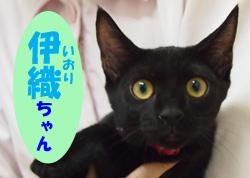 2019.12お友達伊織チャン