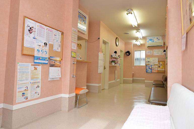 犬専用の受付と待合室。大型犬でもお待ちいただけるように広くスペースを取っています。