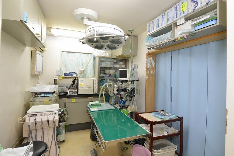 手術室。手術は吸入麻酔を使って行われます。心電図をつけて細心の注意を払っています。